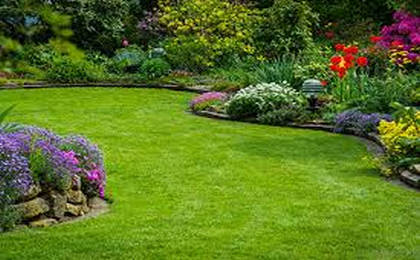 Service | Eastern Hill Landscaping